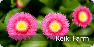 button_keikifarm
